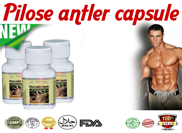 pilose-antler-capsule5