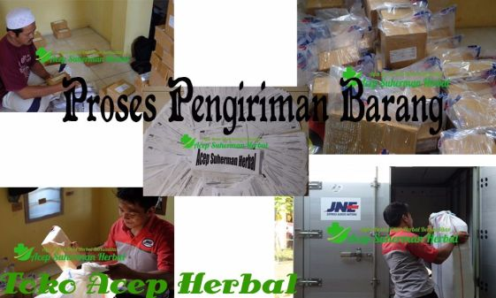 Obat Herbal Mata Juling Tradisional